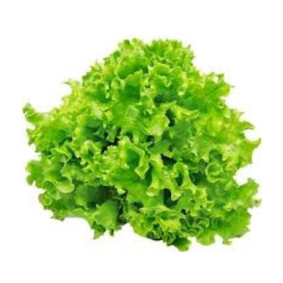 Salata kristalka, kg